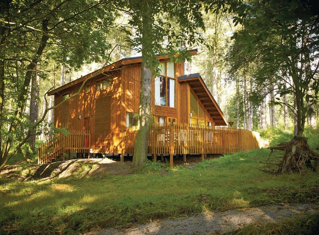 Holiday Lodges In Hampshire And Hampshire Log Cabins 12